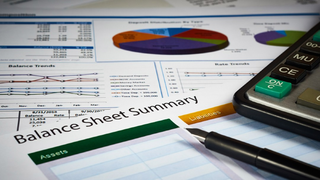 balance sheet summary, best fiduciary liability insurance in florida and other select states