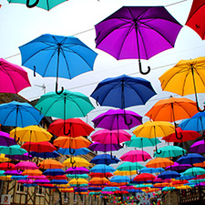 umbrellas on a washing line, Top Personal Insurance Solutions Near You